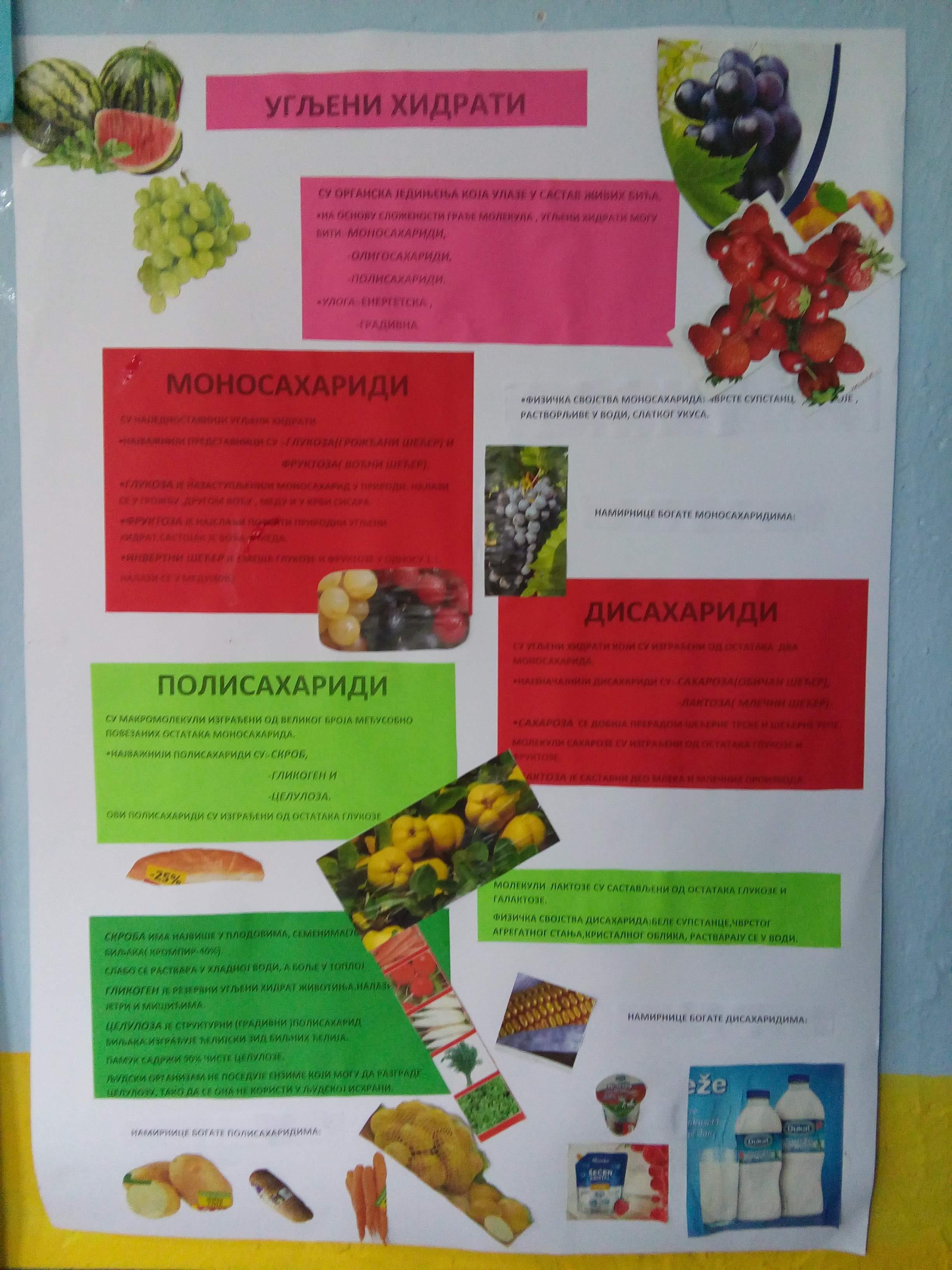Dan zdrave hrane 3