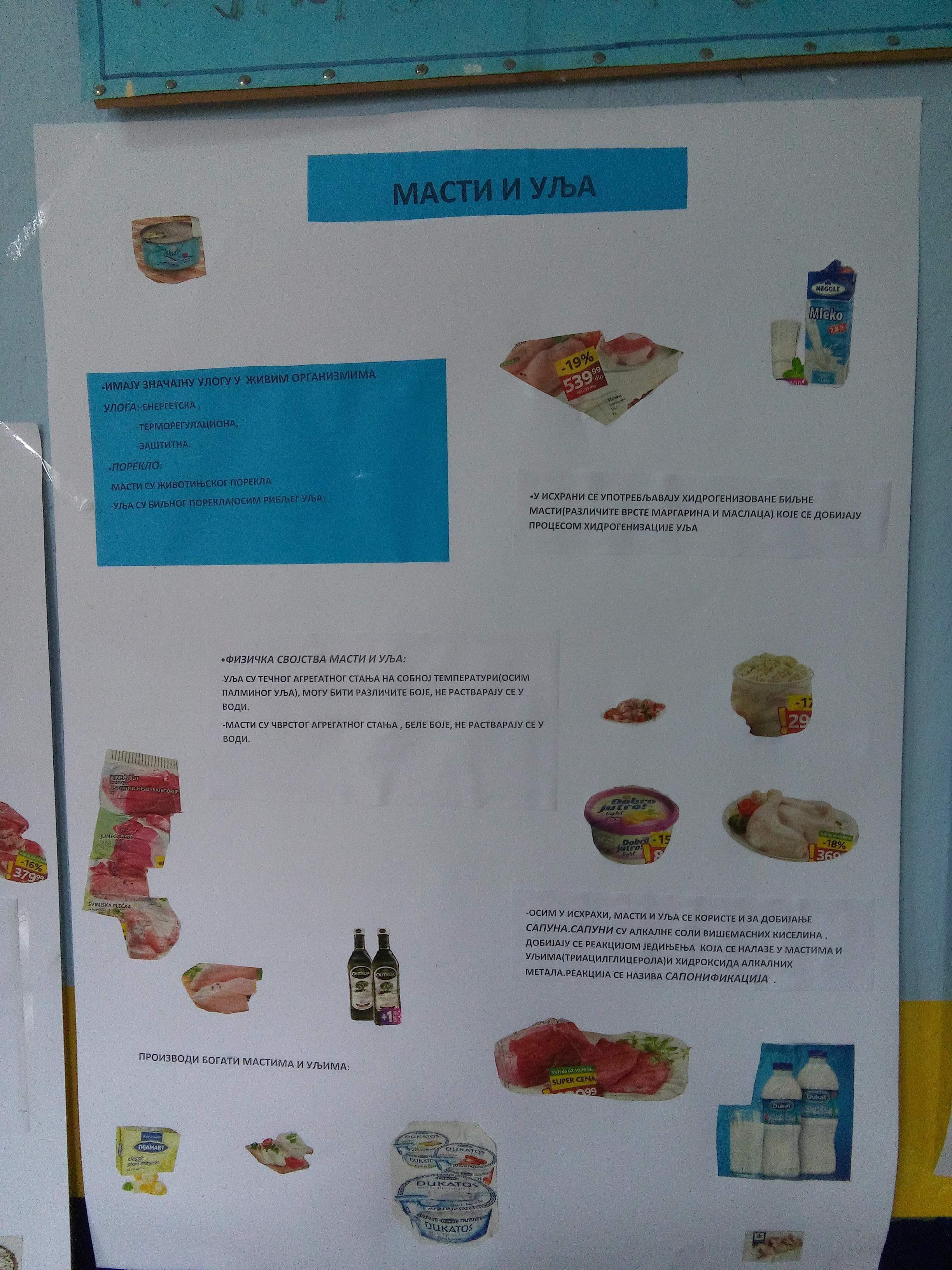 Dan zdrave hrane 4