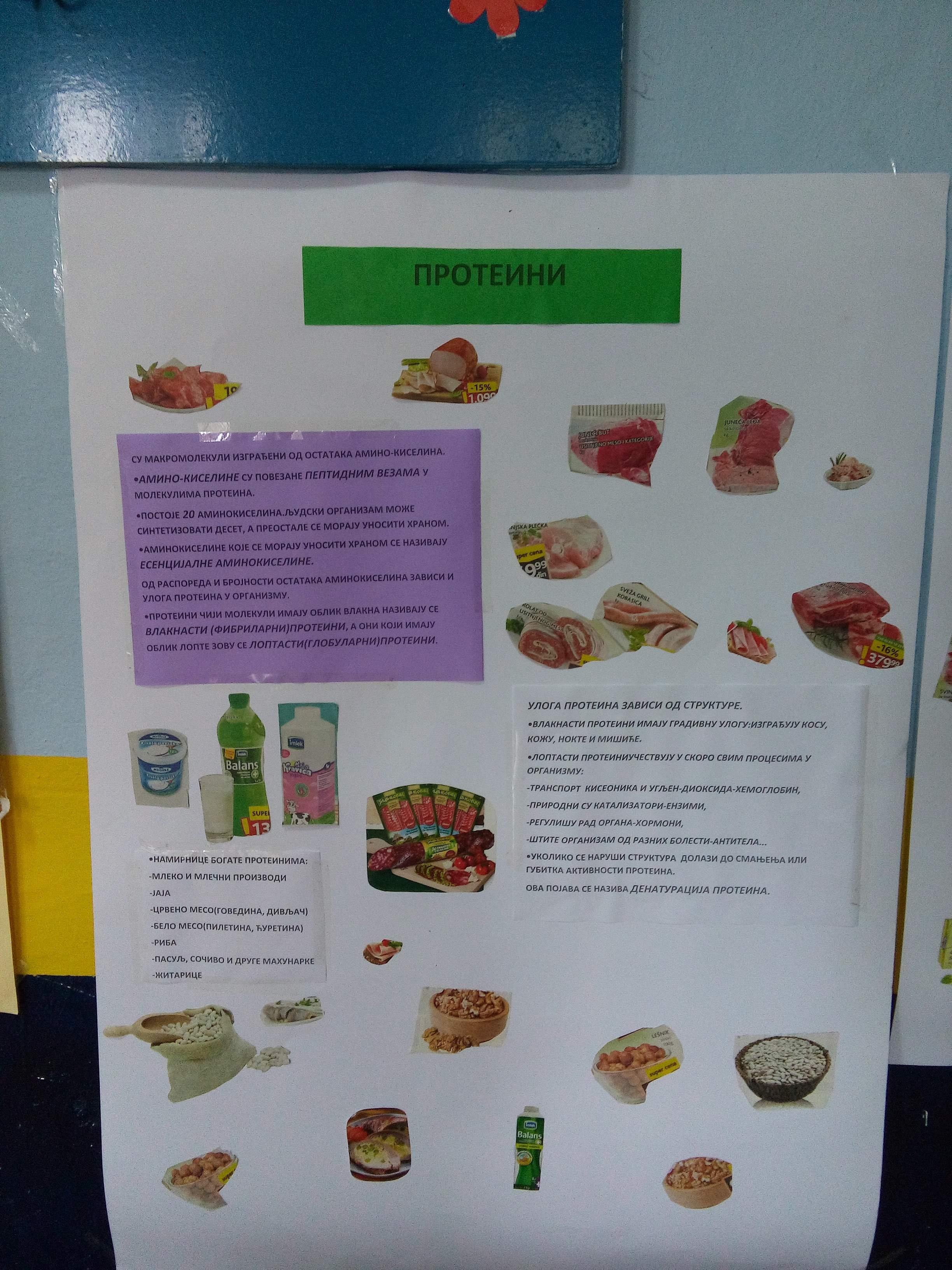 Dan zdrave hrane 5